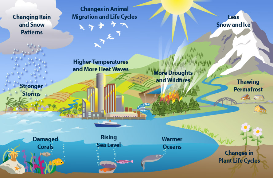 An overview of the results of climate change. Emissions from flying are one of the main contributors to climate change.